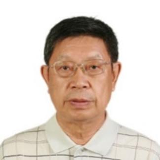 Zhu  Jinkang